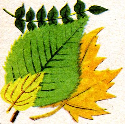 Листья (рис. 8)